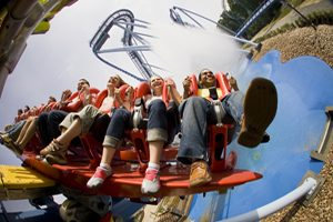 Williamsburg Busch Gardens Packages